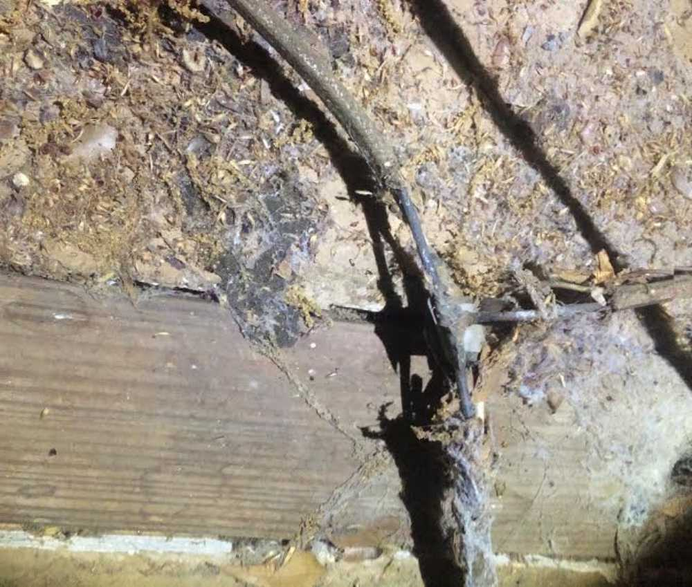 Katy Home Inspection Electrical Safety Hazard