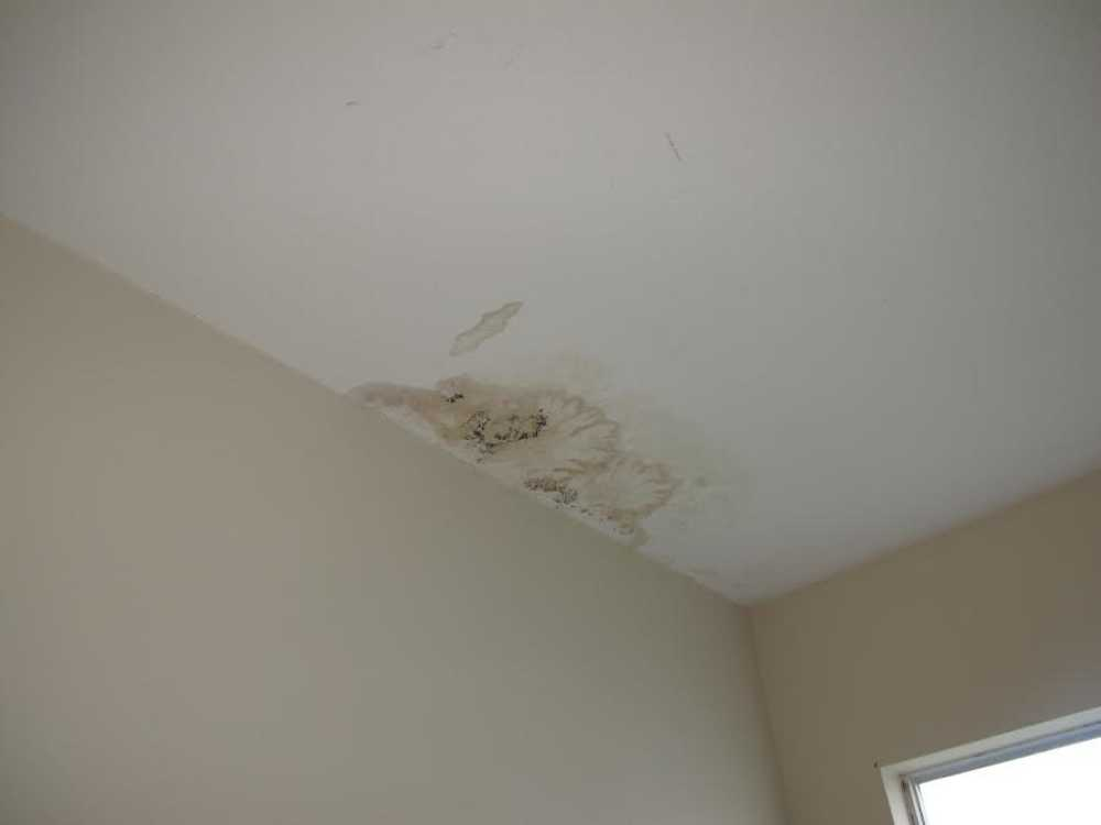 Katy Home Inspection Water Leak